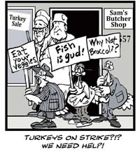 picketing turkeys